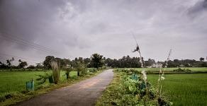 odisha-347