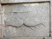Fish symbols