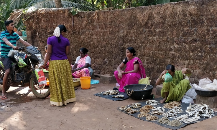 The Fish vendors lead by Women
